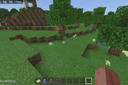 MinecraftBedrock1.14.3AllBiomesDesertSeedFeb292020-8.jpg