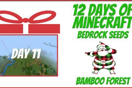 BambooForestSeedDec2020-YT.jpg