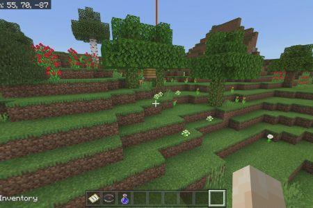 MinecraftBedrockFlowerForestSeed-1.jpg