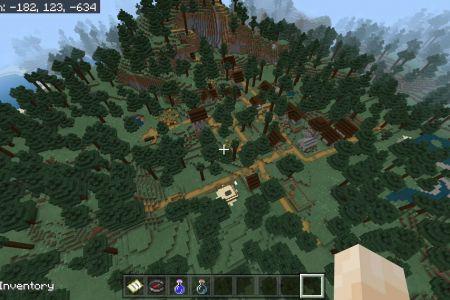 MinecraftBedrockSwampSeedJAN2021-11.jpg
