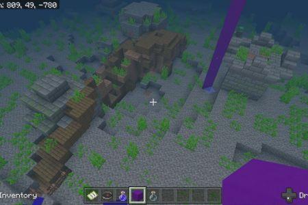 MinecraftBedrock1.14SurvivalIslandSeedFeb2020-2.jpg
