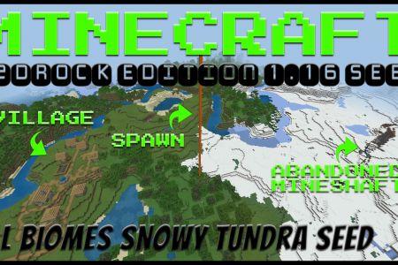 MinecraftBedrockSnowyTundraSeedAUG2020-YT.jpg