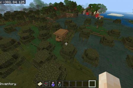 MinecraftBedrockSwampSeedJAN2021-9.jpg
