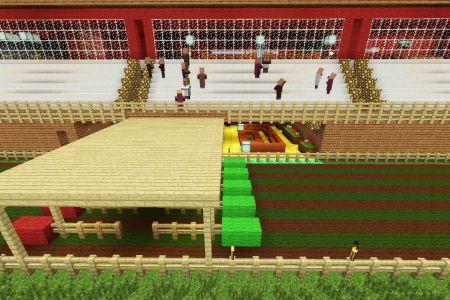 MinecraftHorseRaceTrack29.jpg