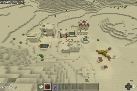SurvivalIslandSeedJune2019-5.jpg