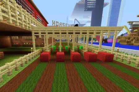 MinecraftHorseRaceTrack34.jpg