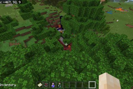 MinecraftBedrockSwampSeedJAN2021-8.jpg